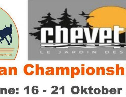 ICF – Europameisterschaft 2019 findet im Oktober in Belgien statt.